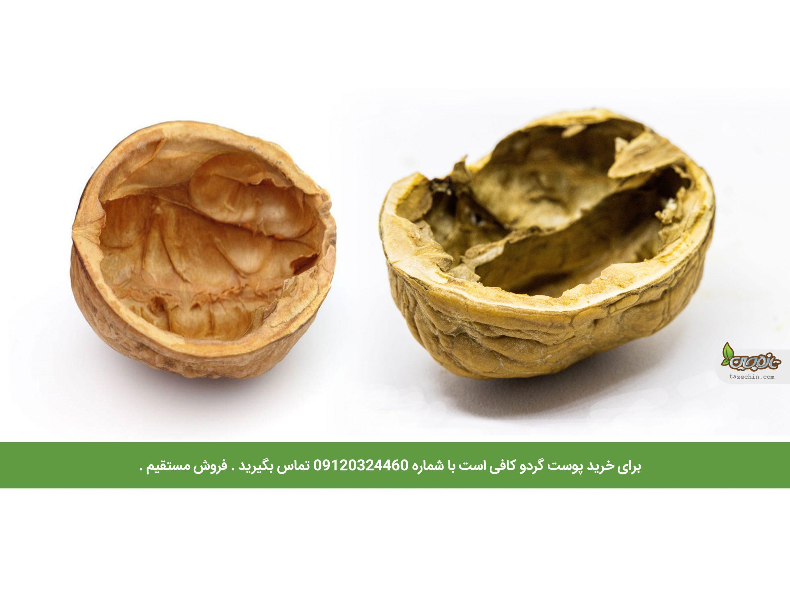 پوست چوبی گردو