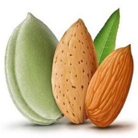 مصرف بادام