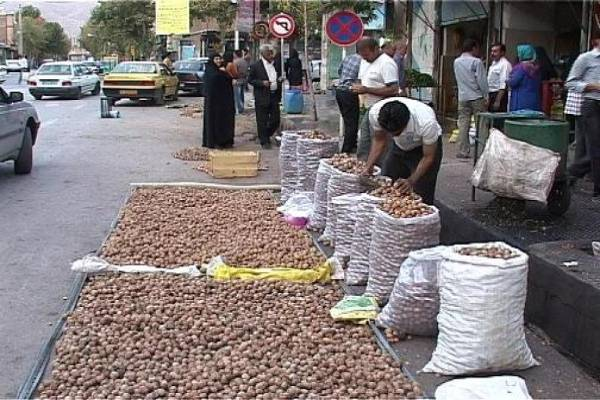 مرکز خرید گردو تهران